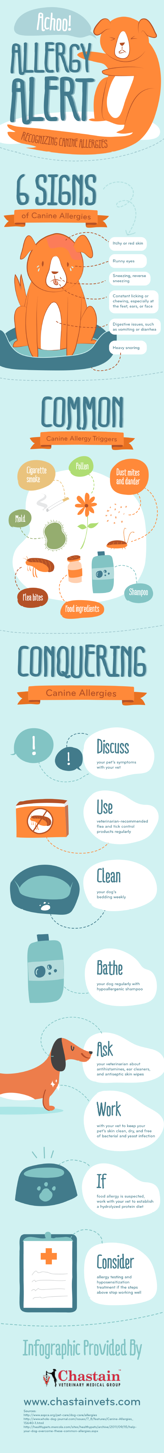 recognizing-canine-allergies